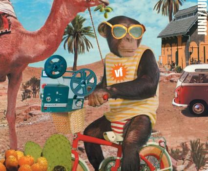 Affiche, Afrikaanse films